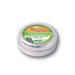 Forté Pharma Forté Royal gommes gorge eucalyptus - 45g