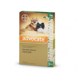Bayer Advocate Petits Chiens - 3 Pipettes
