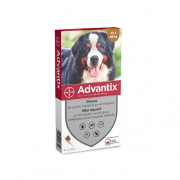 Bayer Advantix Très grand chien - 4 Pipettes